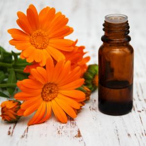 Ringelblumen-Extrakt Bio